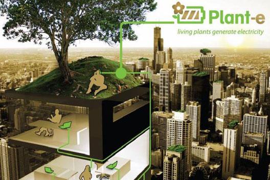 Plant E , Elektriciteit uit planten via een groen dak of gevel!